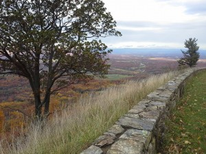 Blue Ridge View